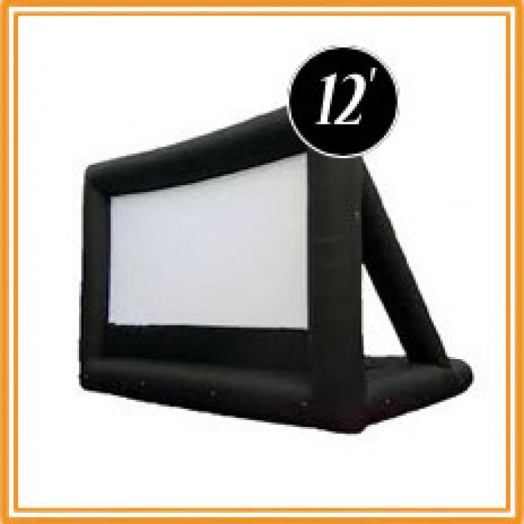 12' Movie Screen w/AV