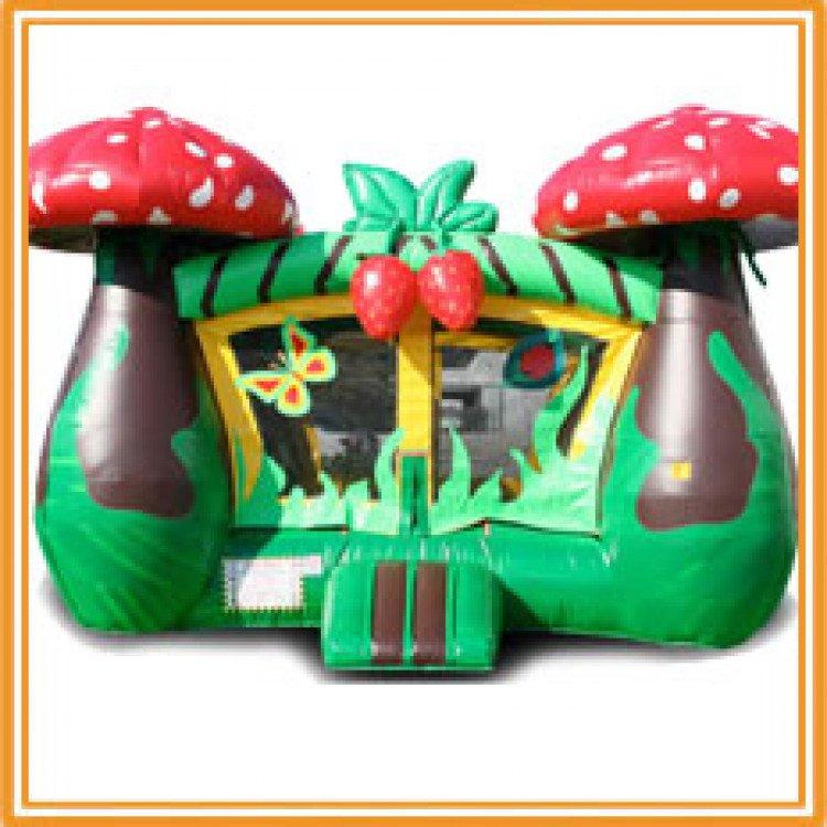 strawberry bounce house 1615528292 big Strawberry Dream